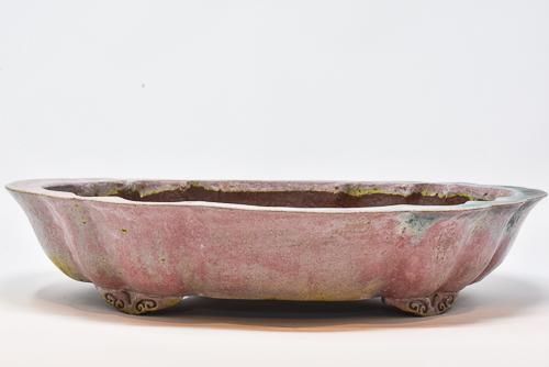 colorful pot