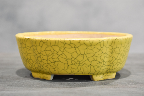 yellow crackle