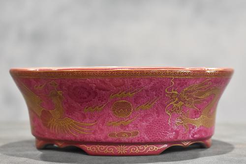 pink dragon pot